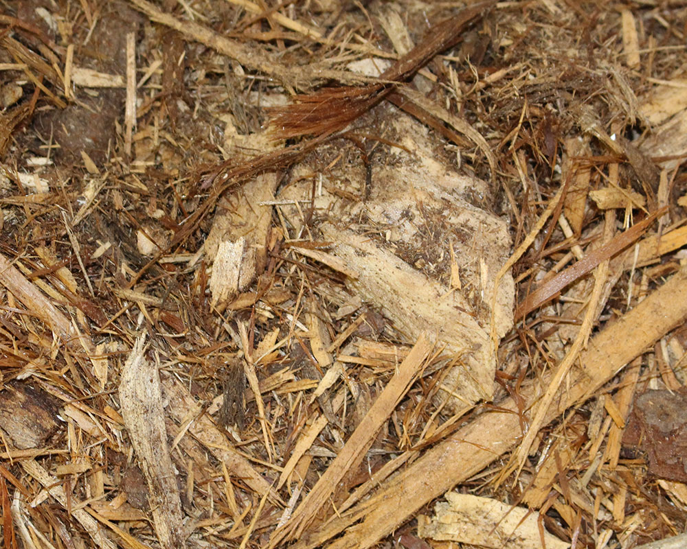 Bag Mulch Cypress Blend.JPG
